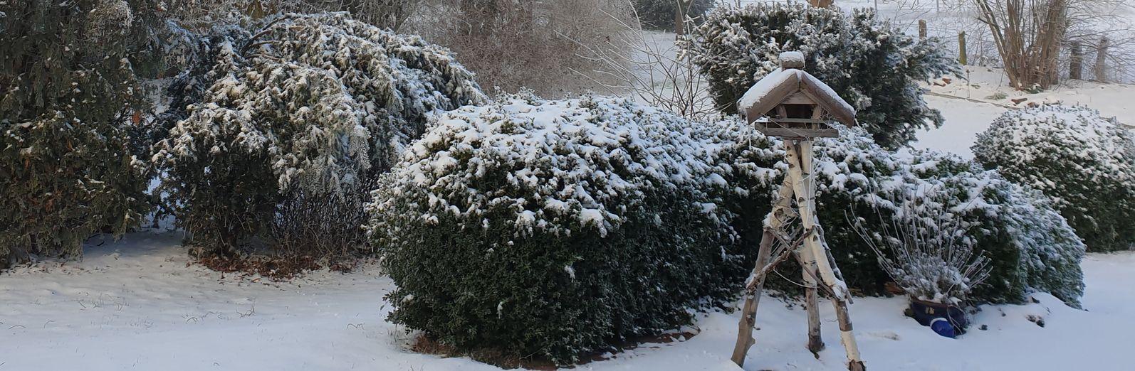 Startseite Banner 11 Winter Garten